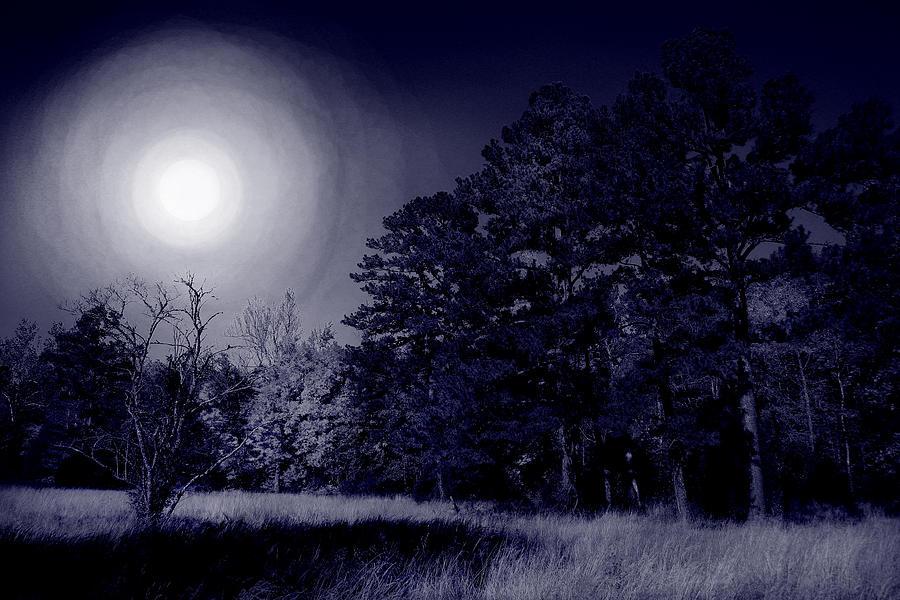 Moon And Dreams Photograph
