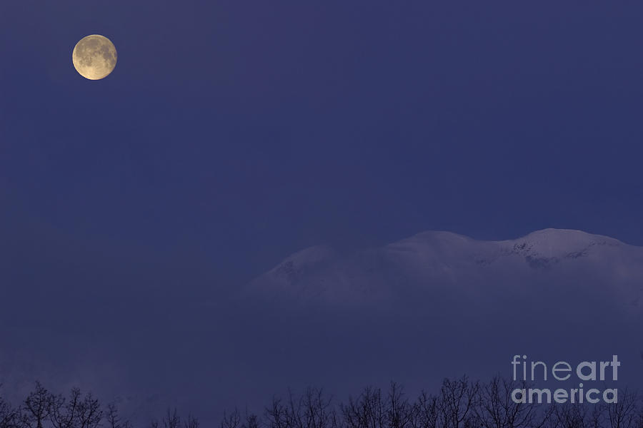 Moon At Dawn Photograph