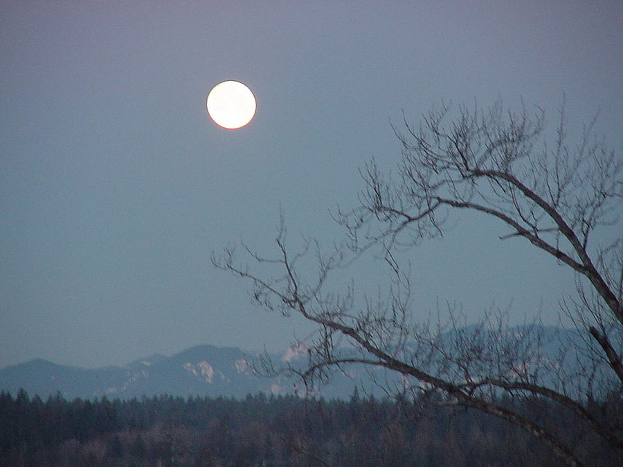 Moon Over The Olympics Photograph