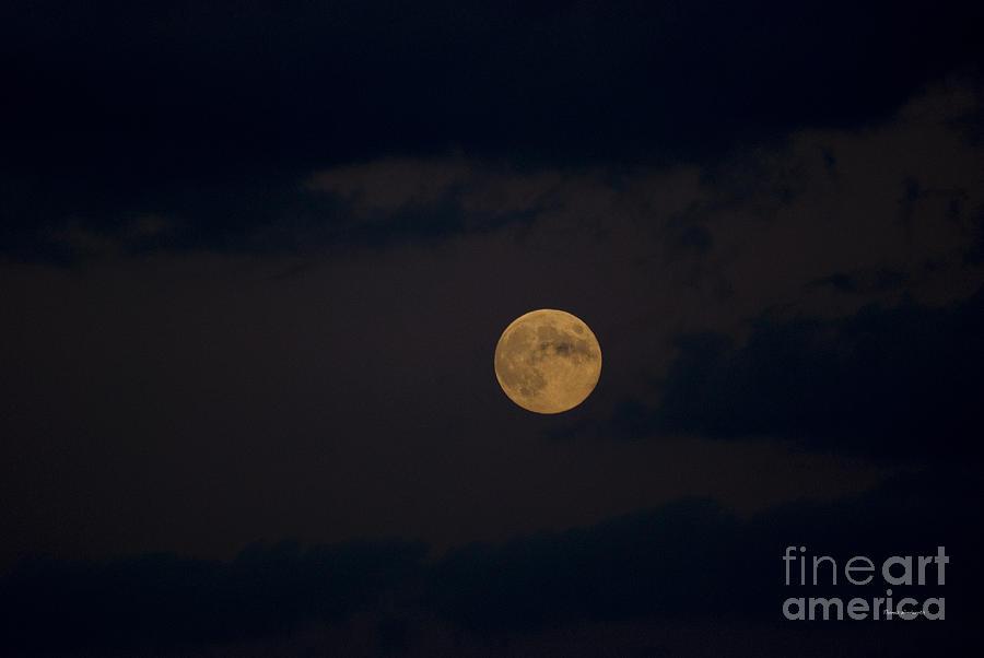 Moon Rising 05 Photograph