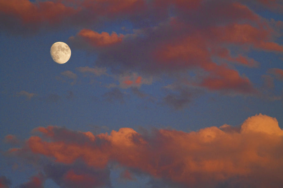 Moon Sunset Photograph  - Moon Sunset Fine Art Print