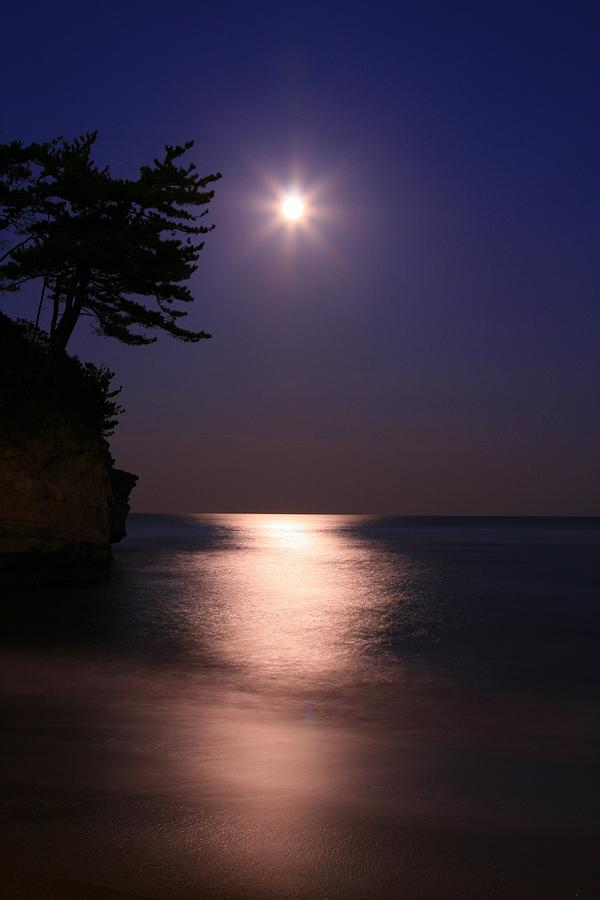 Vertical Photograph - Moonlight (cormorant Point) by Copyright Crezalyn Nerona Uratsuji