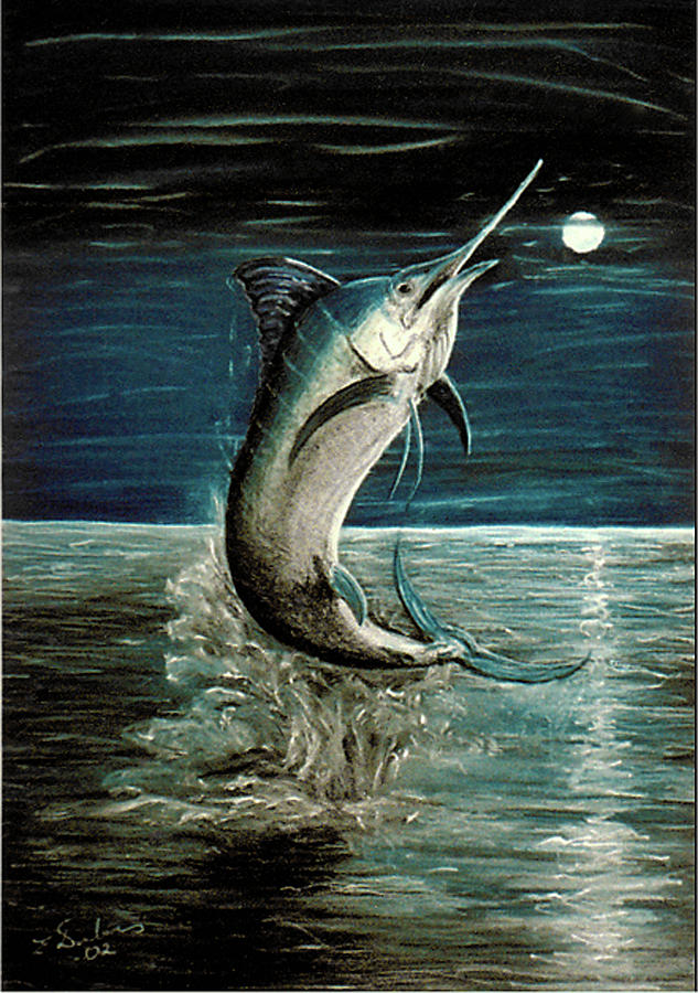 Moonlight Marlin Pastel  - Moonlight Marlin Fine Art Print