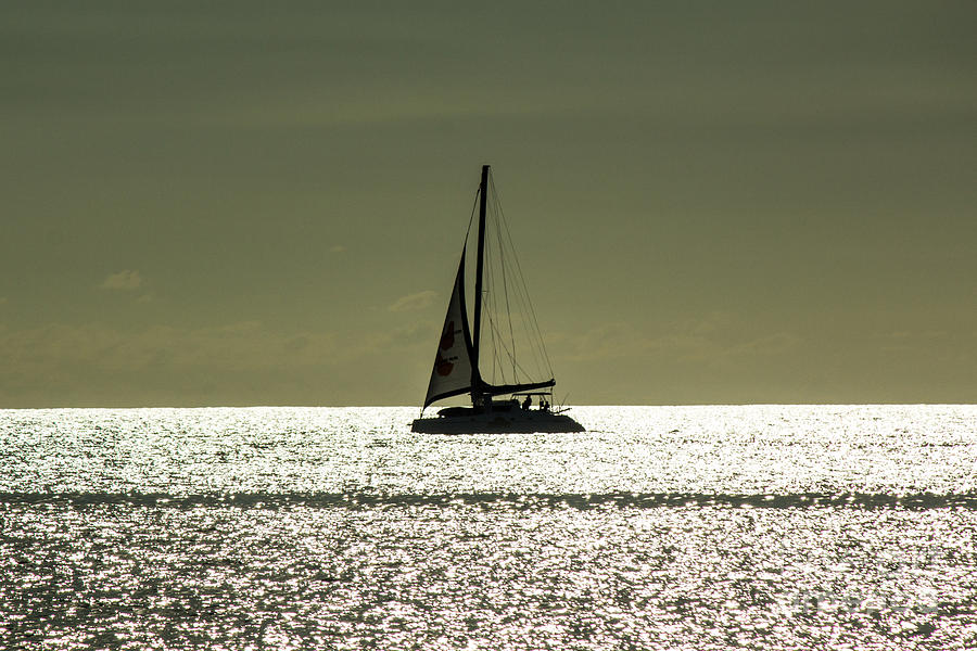 Moonlight Sail Photograph  - Moonlight Sail Fine Art Print