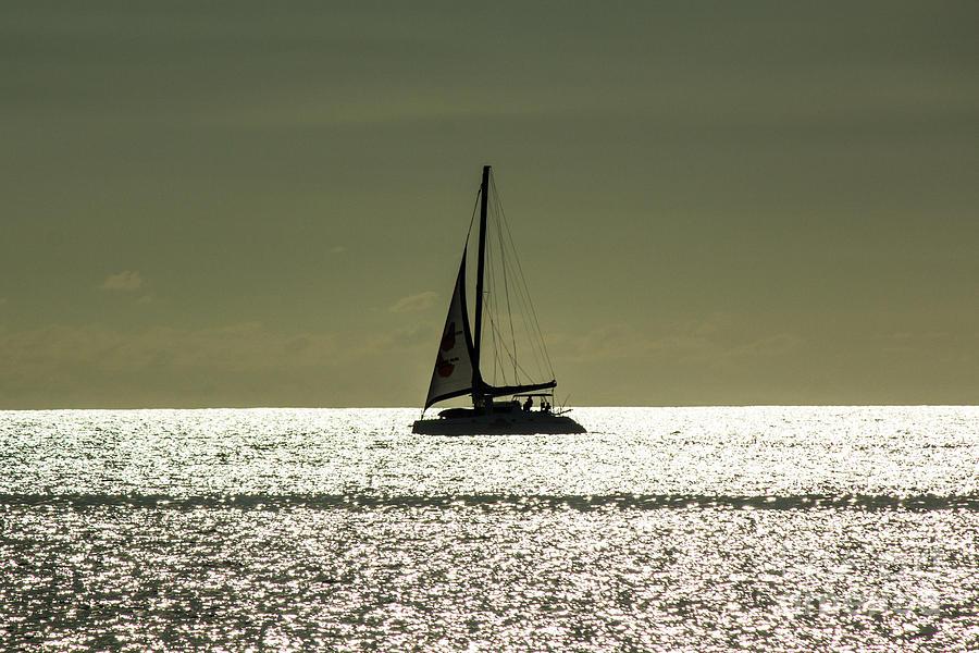 Moonlight Sail Photograph