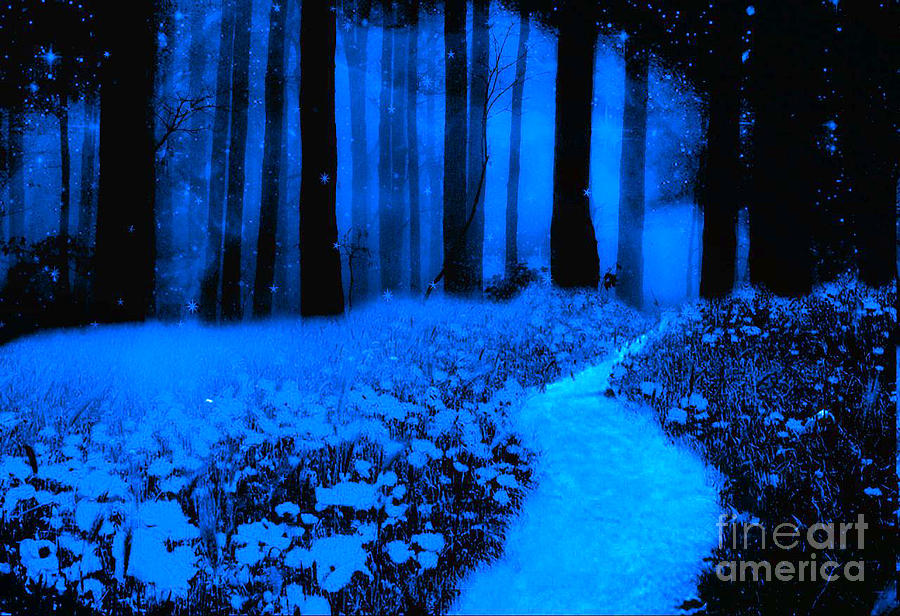Moonlit Blue Haunting Nature Path Woodlands Photograph  - Moonlit Blue Haunting Nature Path Woodlands Fine Art Print