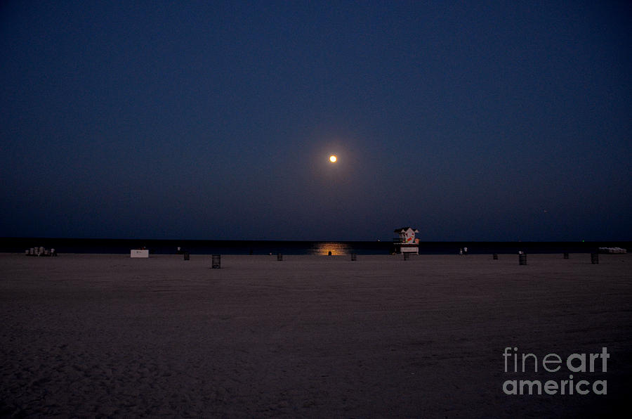Moonlit South Beach Photograph  - Moonlit South Beach Fine Art Print