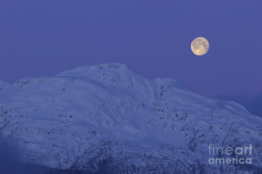 Moonset At Dawn Photograph  - Moonset At Dawn Fine Art Print