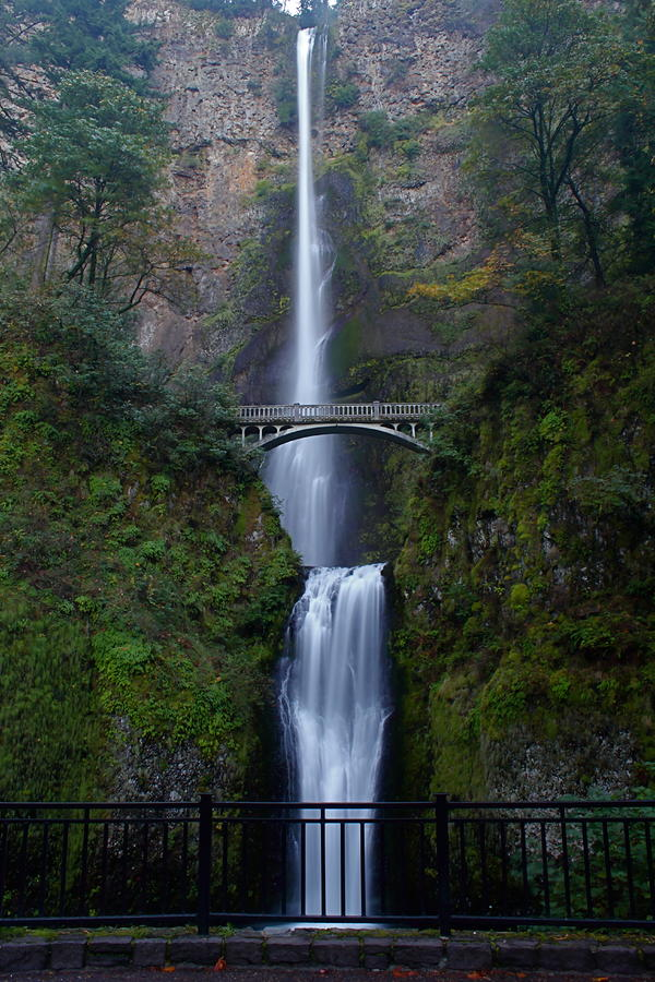 More Multnomah Falls Photograph  - More Multnomah Falls Fine Art Print