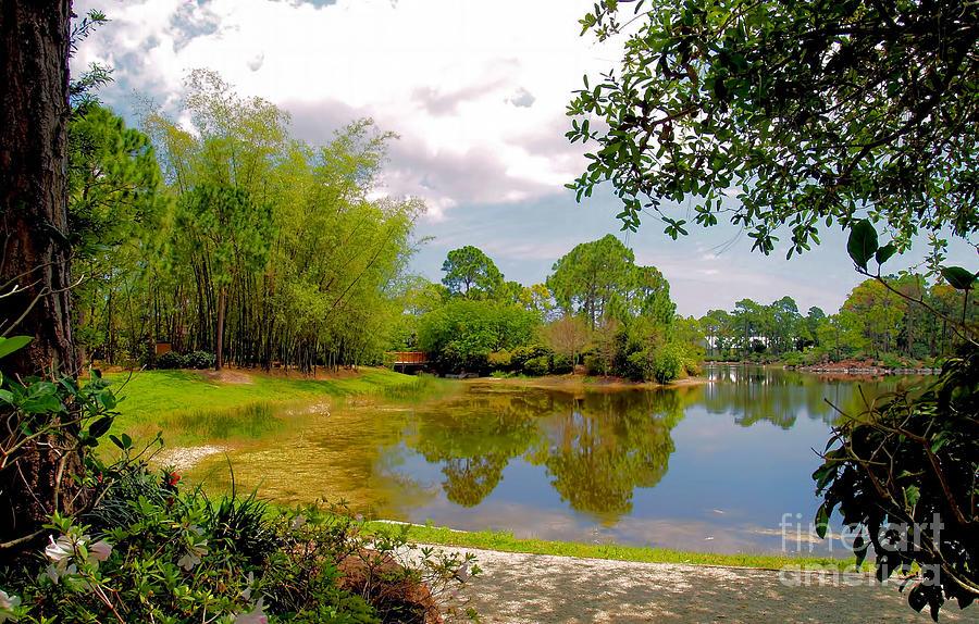 Morikami Gardens Photograph By Nora Martinez