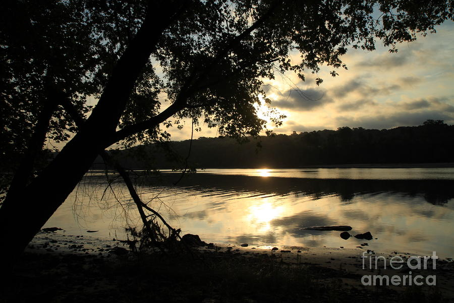 Morning Arises Photograph  - Morning Arises Fine Art Print
