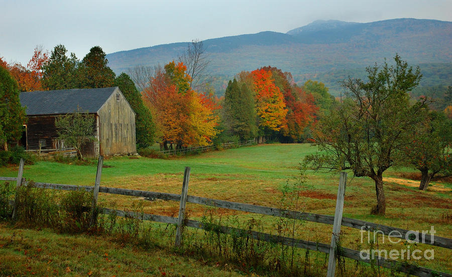 Morning Grove - New England Fall Monadnock Farm Photograph