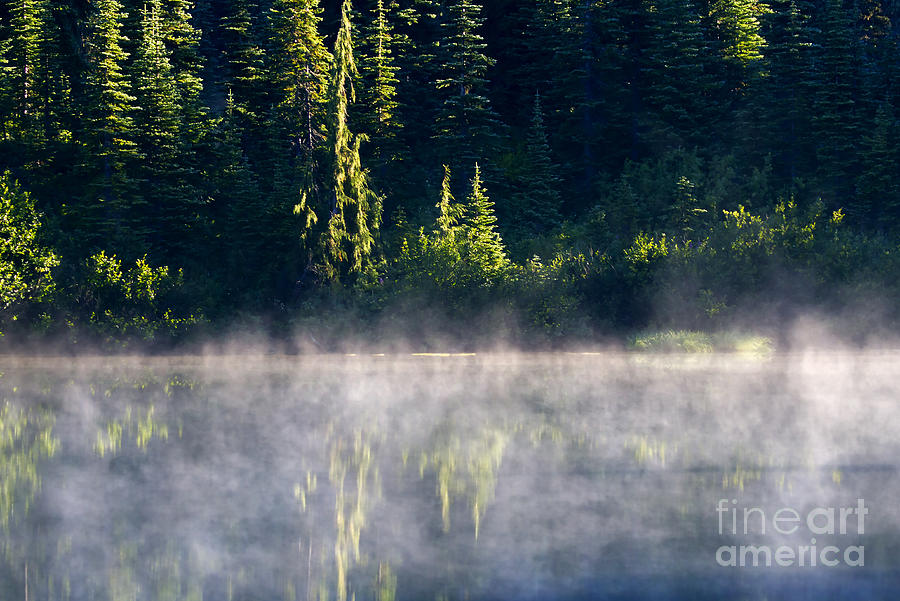 Lake Photograph - Morning Mist by Mike  Dawson