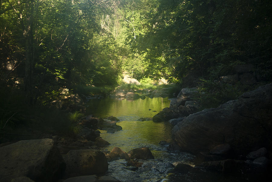 Morning River Photograph