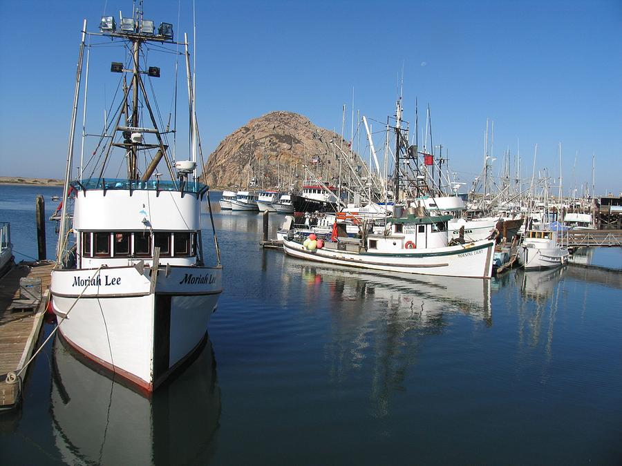 Morro bay fishing fleet photograph by bob davis for Morro bay fishing