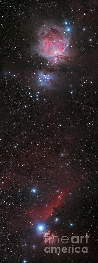 nebula in orion the horsehead nebula - photo #26