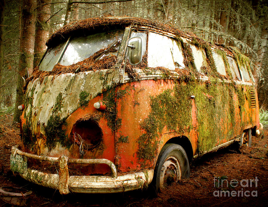 Moss Covered 23 Window Bus Photograph  - Moss Covered 23 Window Bus Fine Art Print