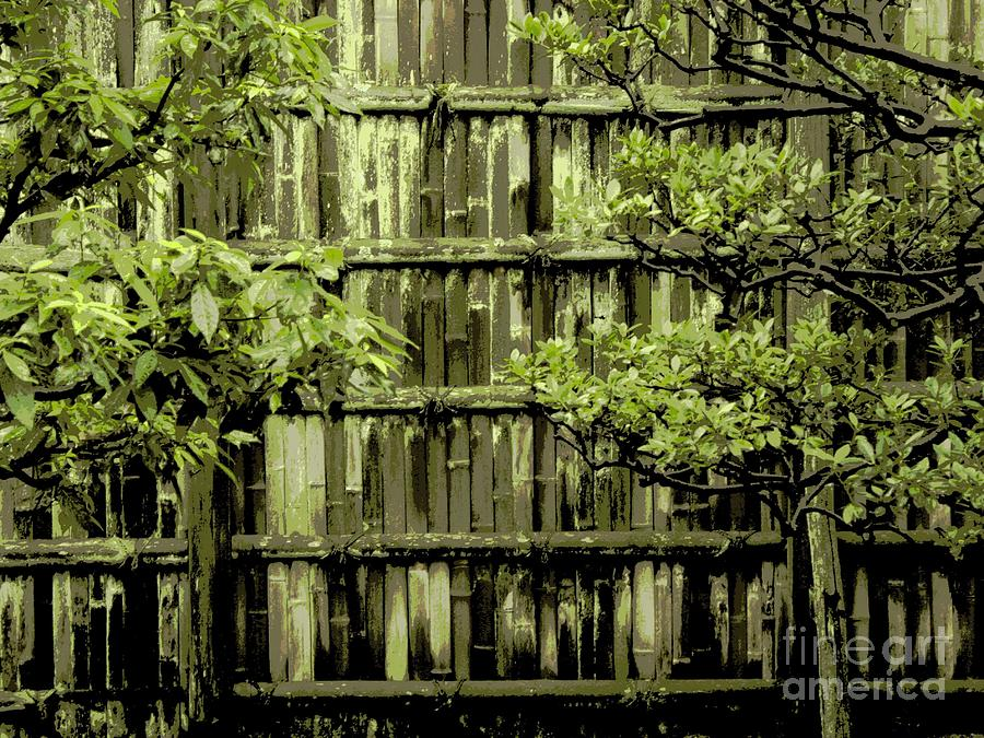 Mossy Bamboo Fence - Digital Art Photograph