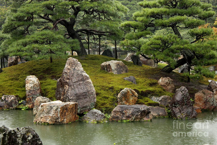 Mossy Japanese Garden Photograph