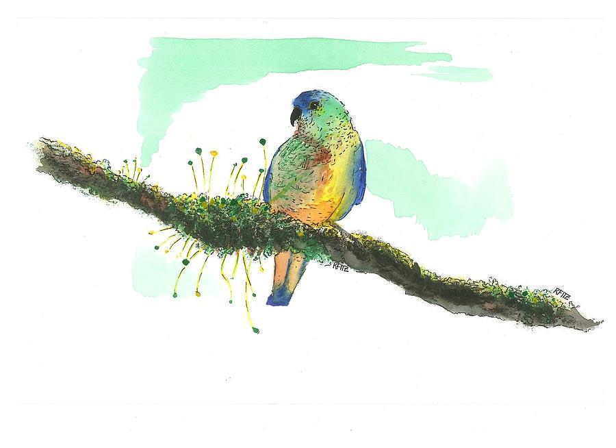 Mossy Parakeet Painting
