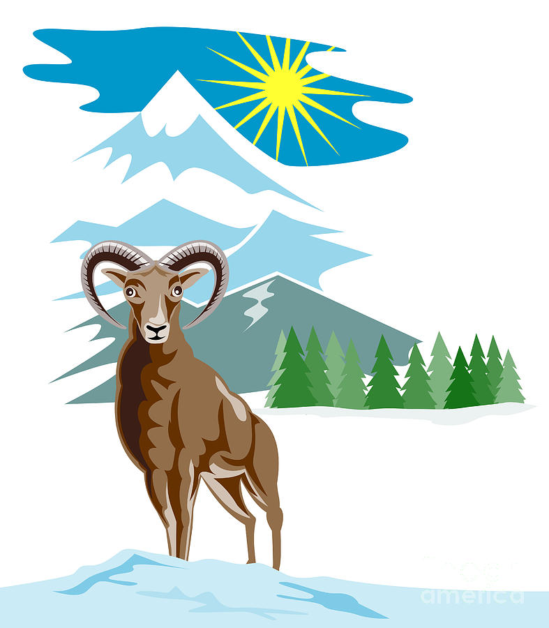 Mouflon Sheep Mountain Goat Digital Art  - Mouflon Sheep Mountain Goat Fine Art Print