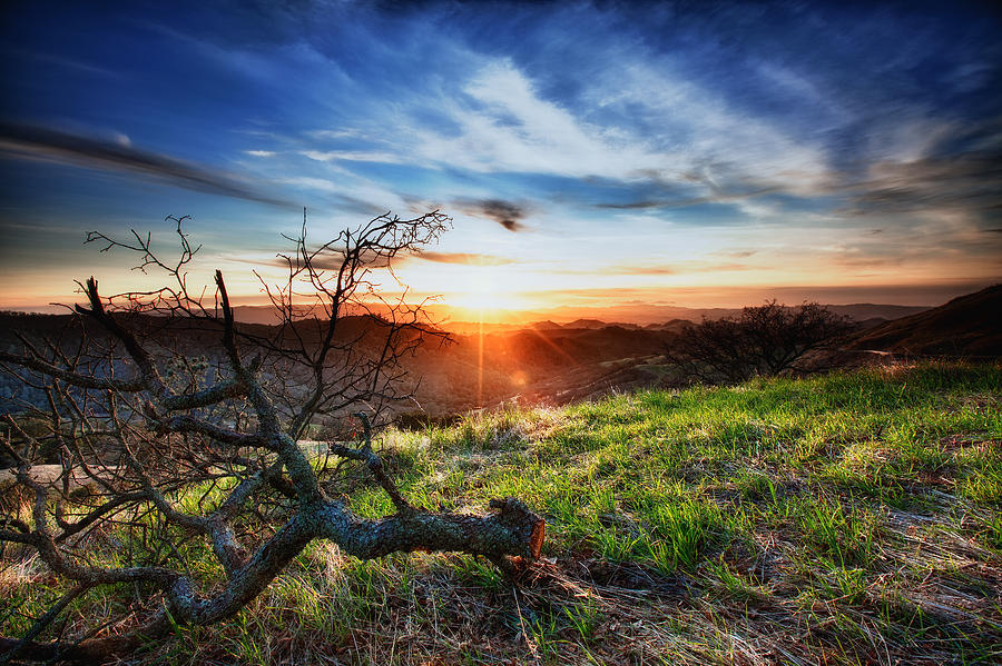 Mount Diablo Sunset Photograph  - Mount Diablo Sunset Fine Art Print