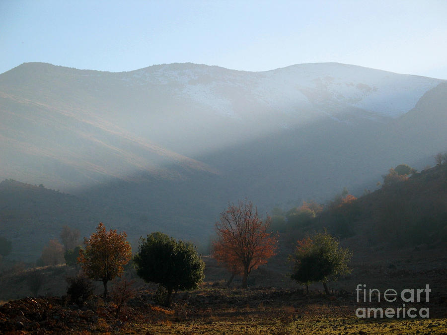 Mount Hermon In Fall Photograph  - Mount Hermon In Fall Fine Art Print