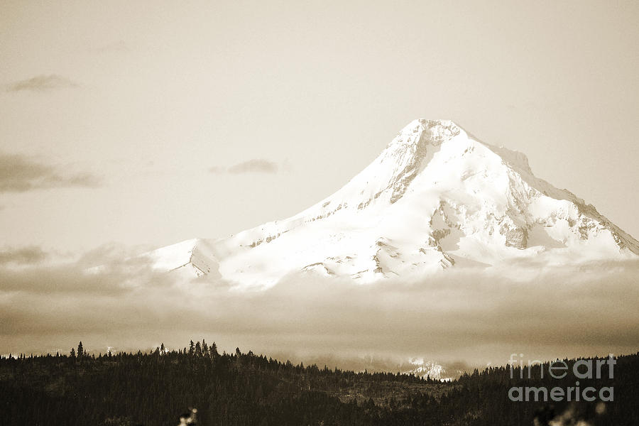 Mount Hood Snow Photograph