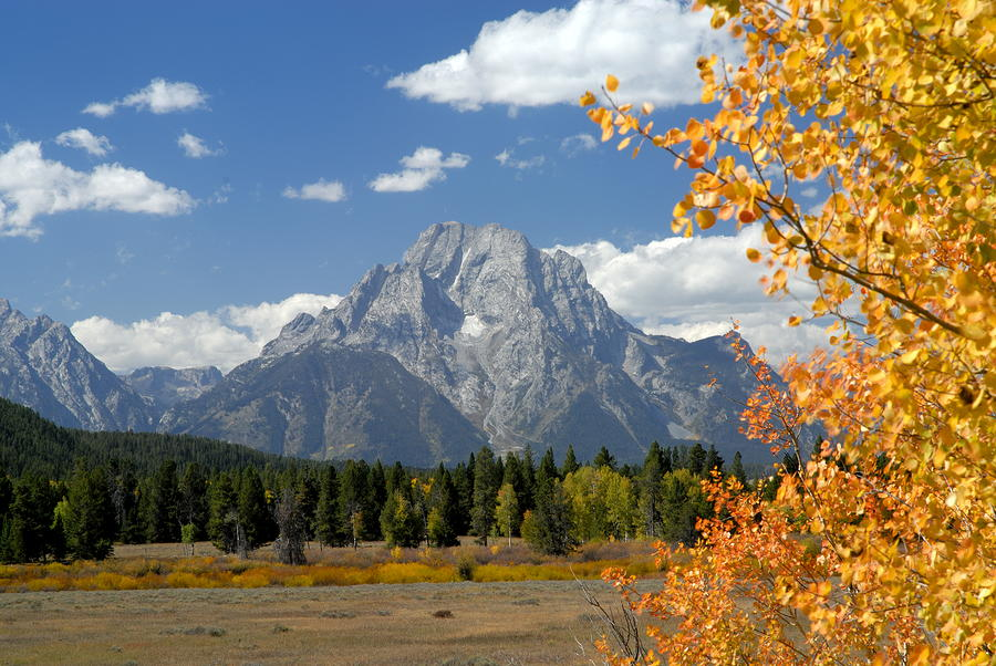 Mount Moran In Autumn Photograph