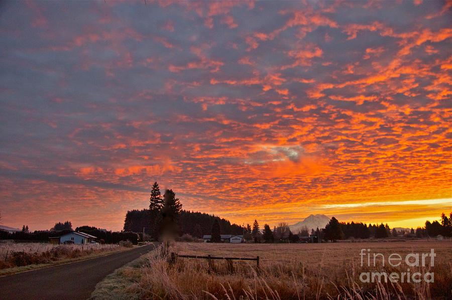 Mount Rainier Dawn Photograph by Sean Griffin