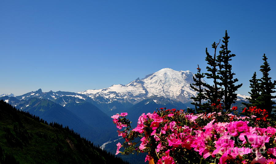 Mount Rainier Seen From Crystal Mountain Summit  2 Photograph