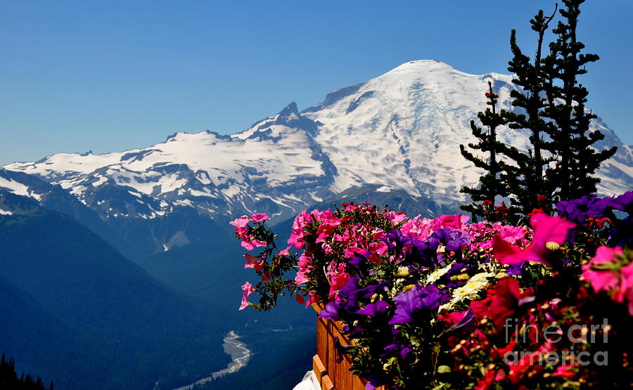 Mount Rainier Seen From Crystal Mountain Summit  3 Photograph