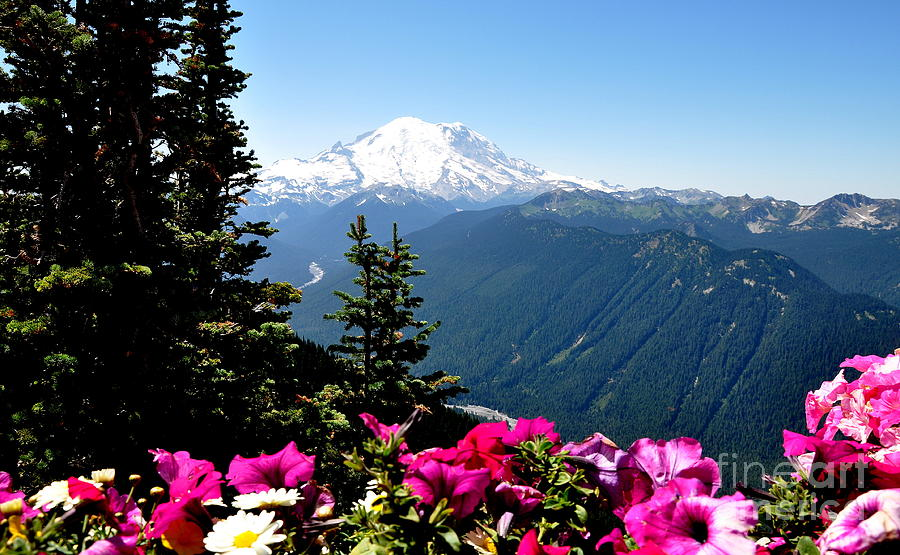 Mount Rainier Seen From Crystal Mountain Summit  5 Photograph  - Mount Rainier Seen From Crystal Mountain Summit  5 Fine Art Print