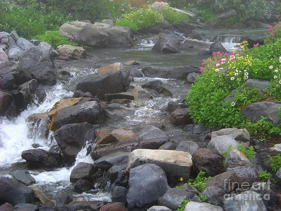 Mountain Stream Photograph  - Mountain Stream Fine Art Print