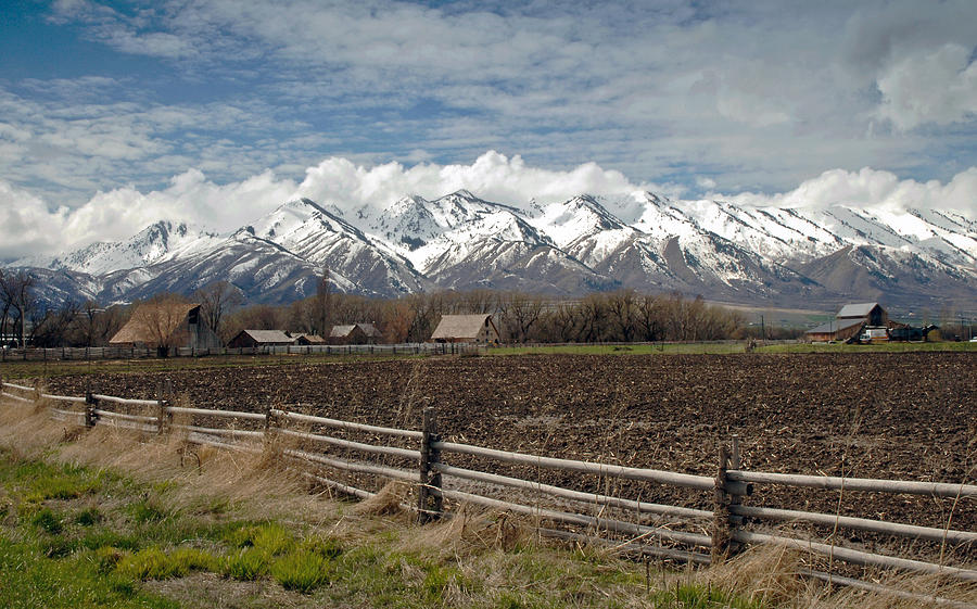 Mountains In Logan Utah Photograph