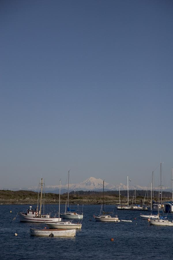 Mt Baker Looms Over A Harbor Full Photograph