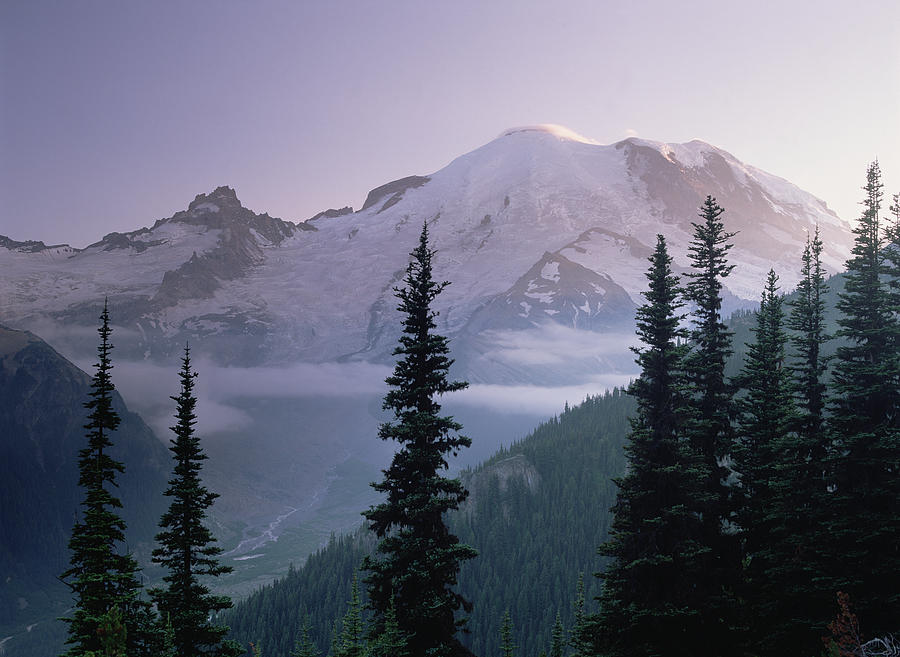 Mt Rainier As Seen At Sunrise Mt Photograph