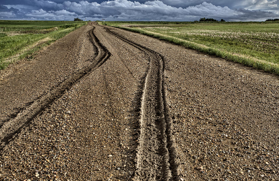 Mud Tire Tracks Digital Art