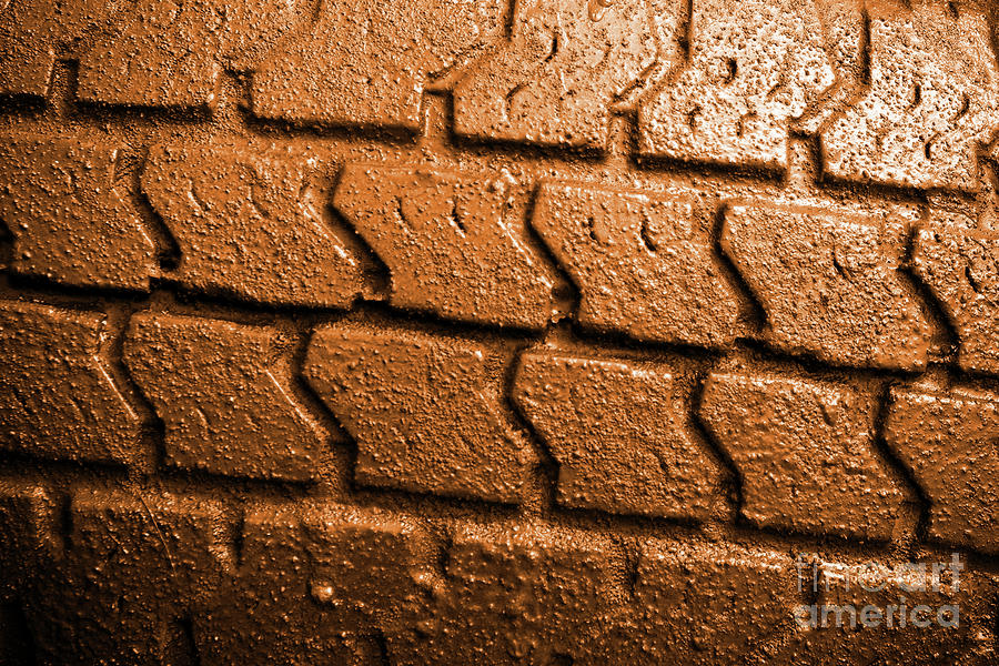 Muddy Tire Photograph  - Muddy Tire Fine Art Print