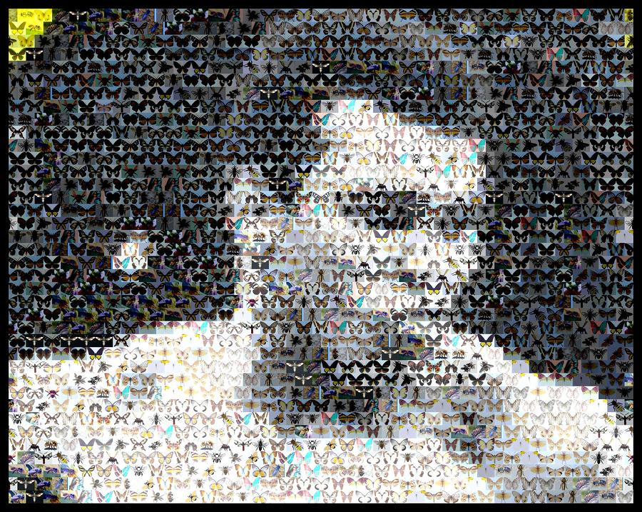 Muhammad Ali Butterfly Bee Mosaic Mixed Media