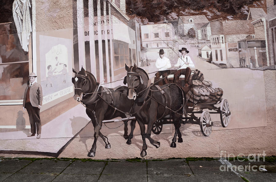 Mural Art Oregon 2 Photograph