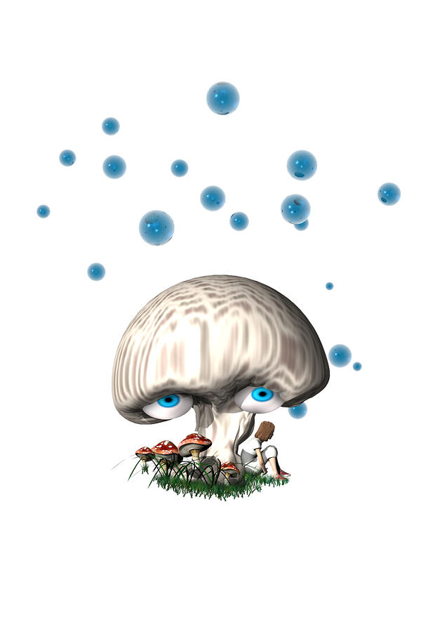 Mushroom Dreams Digital Art