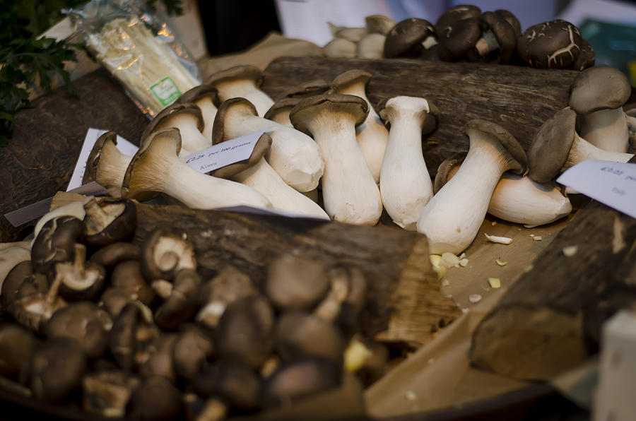 Mushrooms At The Market Photograph  - Mushrooms At The Market Fine Art Print