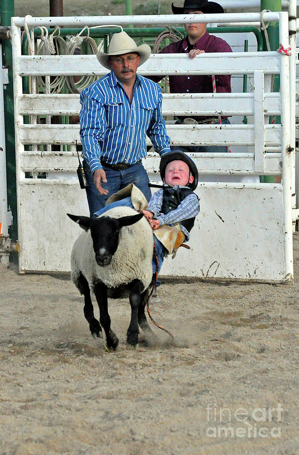 Mutton Bustin Rider Photograph