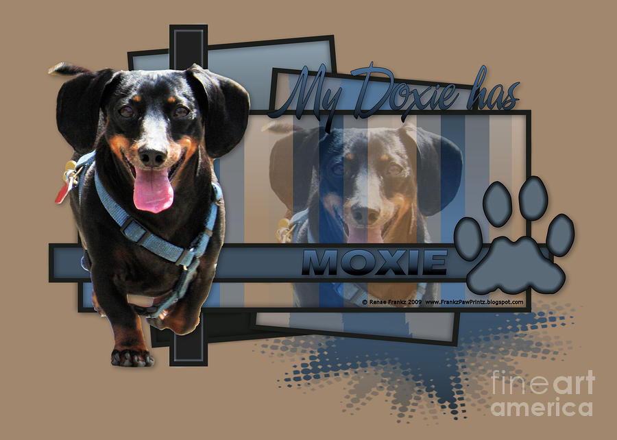 My Doxie Has Moxie - Dachshund Digital Art