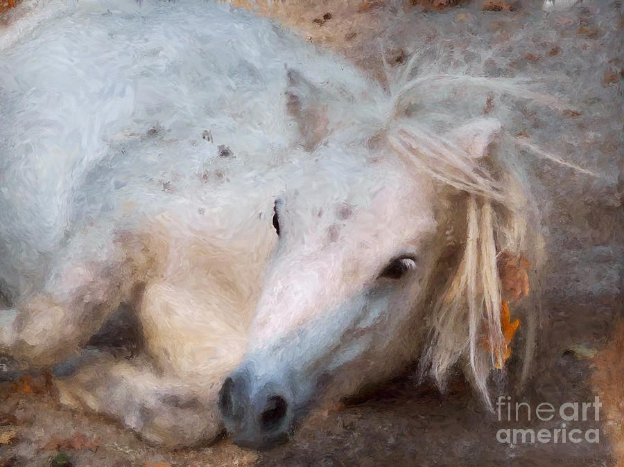 My Little Horse Digital Art  - My Little Horse Fine Art Print