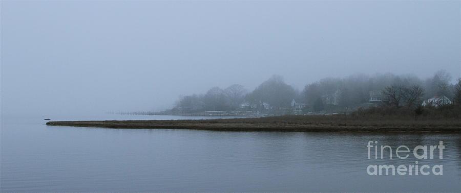 Mystic Fog Photograph