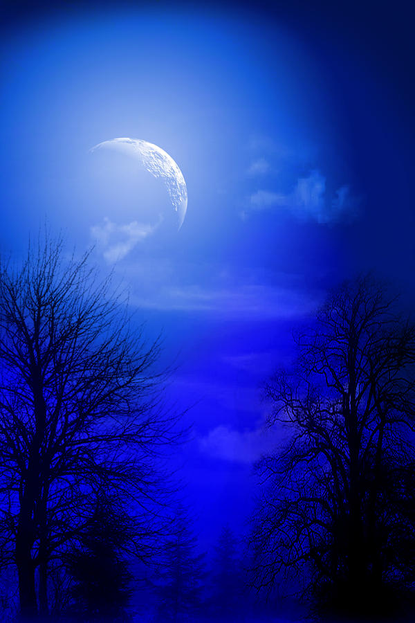 Mystic Night Digital Art  - Mystic Night Fine Art Print