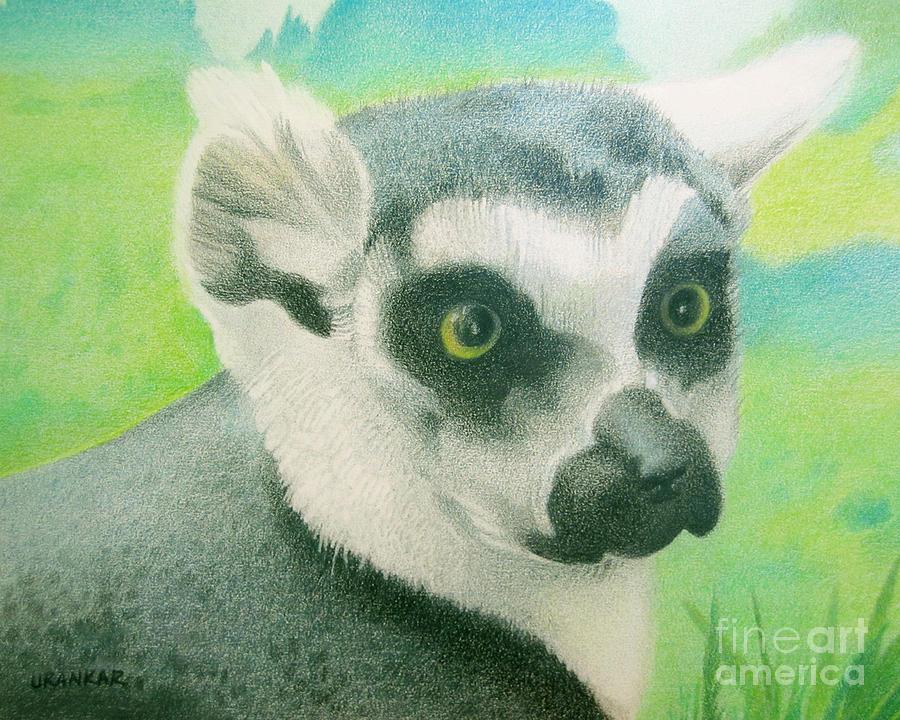 Lemur Drawing - Mystic Seer Of Madagascar by Lisa Urankar
