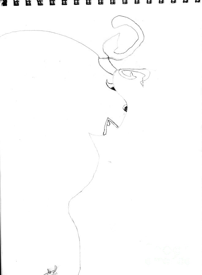 Mystical Animal Drawing